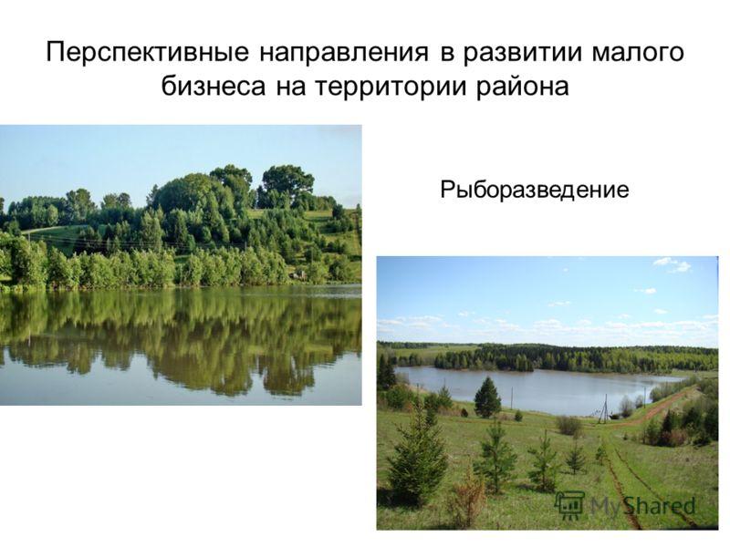 28 Перспективные направления в развитии малого бизнеса на территории района Рыборазведение