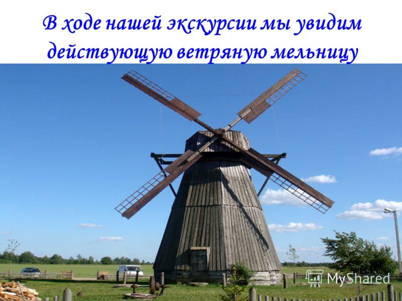 В ходе нашей экскурсии мы увидим действующую ветряную мельницу