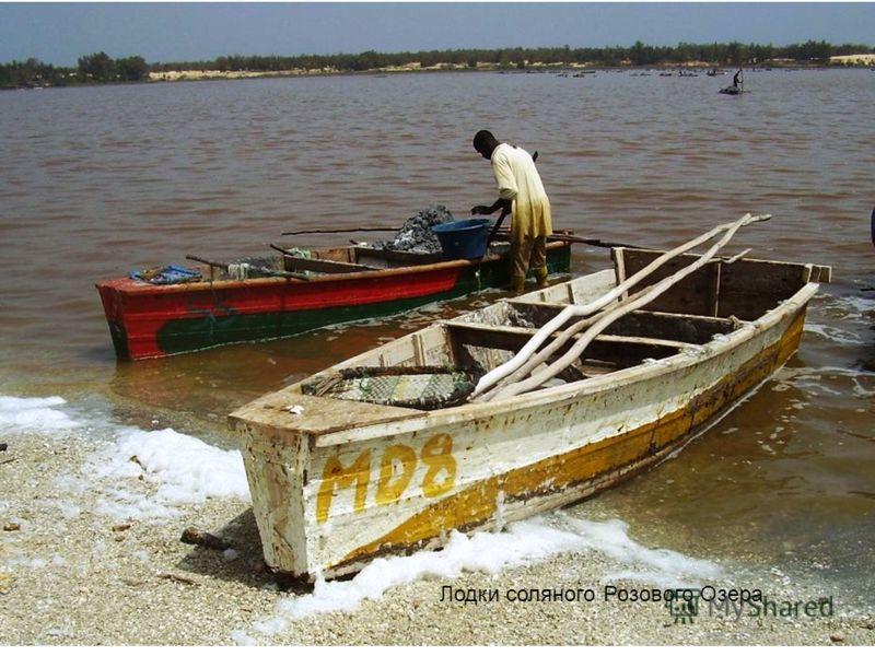 Лодки соляного Розового Озера