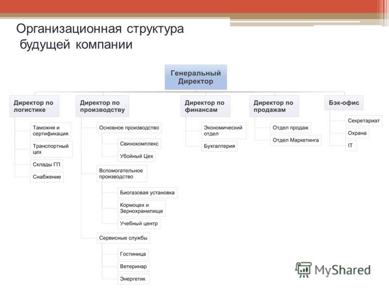 Организационная структура будущей компании