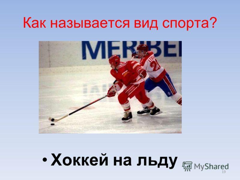 19 Хоккей на льду Как называется вид спорта?