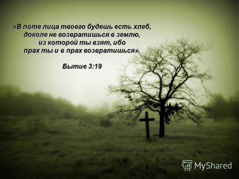 «В поте лица твоего будешь есть хлеб, доколе не возвратишься в землю, из которой ты взят, ибо прах ты и в прах возвратишься». Бытие 3:19