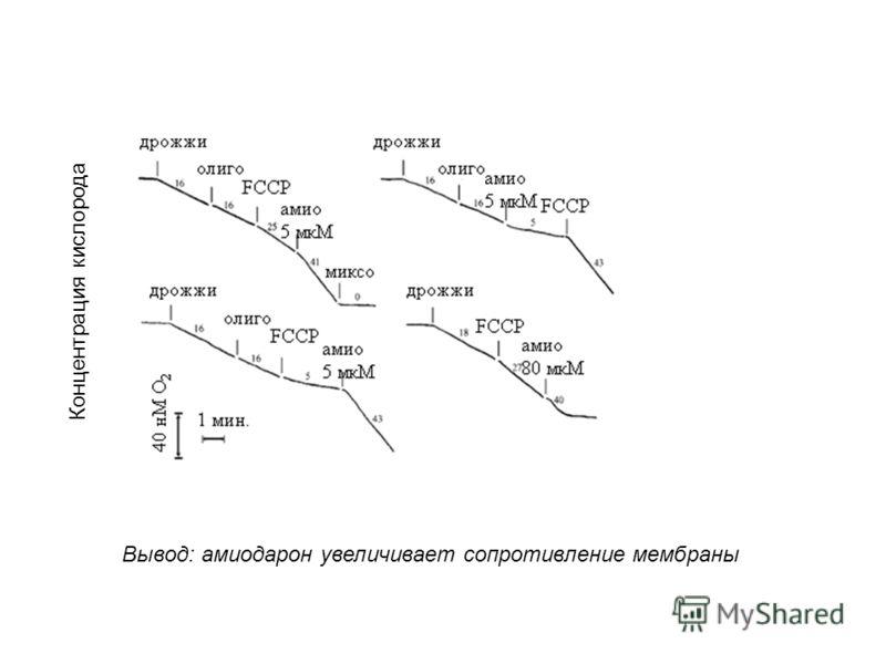 Концентрация кислорода Вывод: амиодарон увеличивает сопротивление мембраны