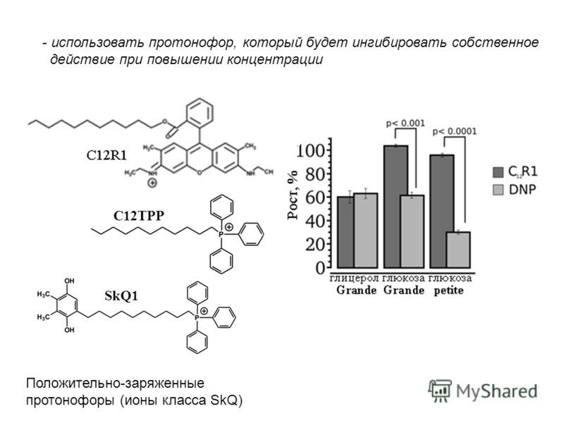 Б Положительно-заряженные протонофоры (ионы класса SkQ) - использовать протонофор, который будет ингибировать собственное действие при повышении концентрации C12TPP SkQ1