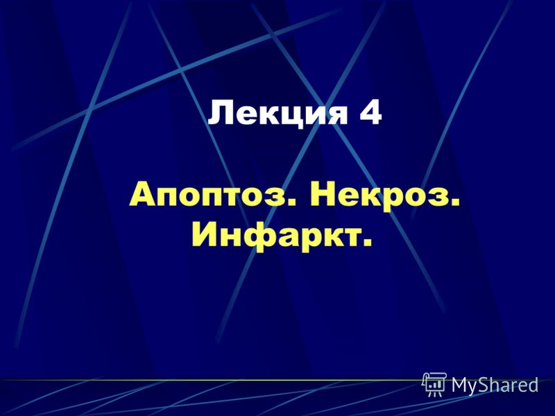 Лекция 4 Апоптоз. Некроз. Инфаркт.