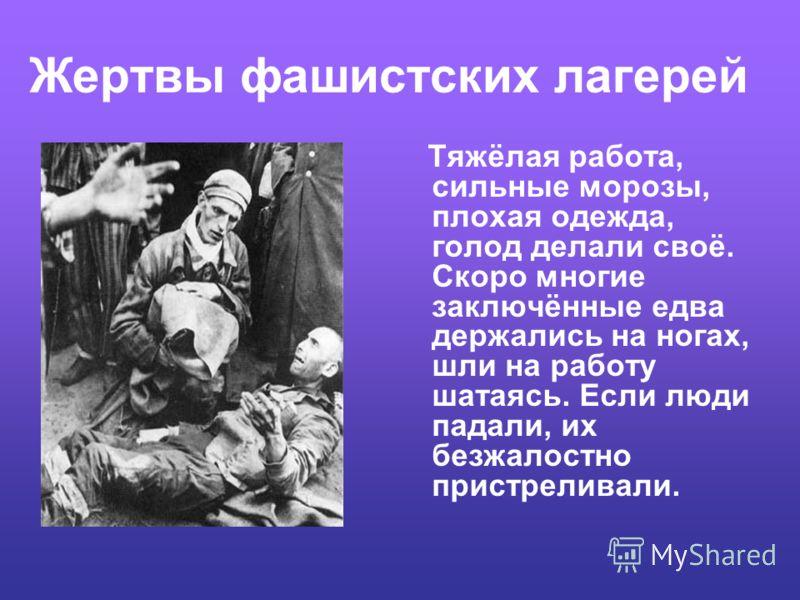 Жертвы фашистских лагерей Узников помещали по 350 - 500 человек в барак, рассчитанный всего на 300. Суточный рацион питания заключённого состоял из 150300 граммов хлеба, смешанного наполовину с опилками, и чашки супа из овощных отходов. Отработка тру