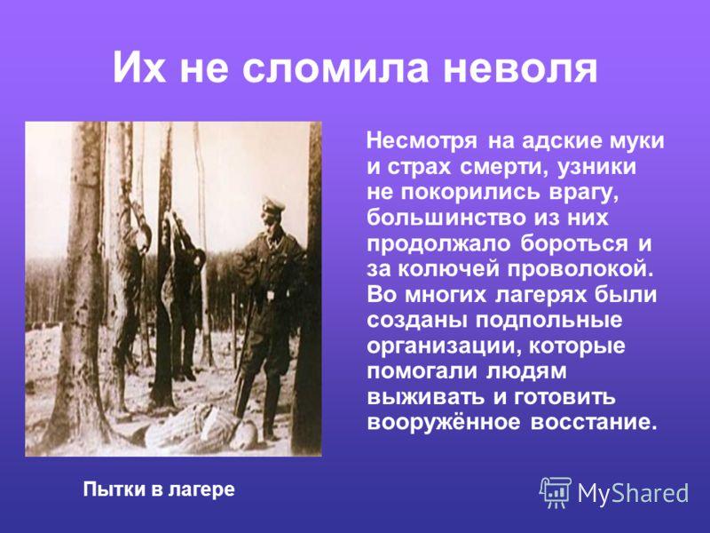 Жертвы фашизма Трагическая судьба не обошла стороной и наших земляков. В Книге Памяти Костромской области названы имена 887 человек, погибших в плену.