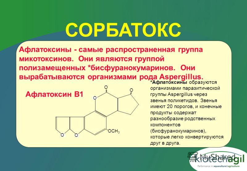СОРБАТОКС О О О О OCH 3 О Афлатоксины - самые распространенная группа микотоксинов. Они являются группой полизамещенных *бисфуранокумаринов. Они вырабатываются организмами рода Aspergillus. Афлатоксин B1 *Афлатоксины образуются организмами паразитиче