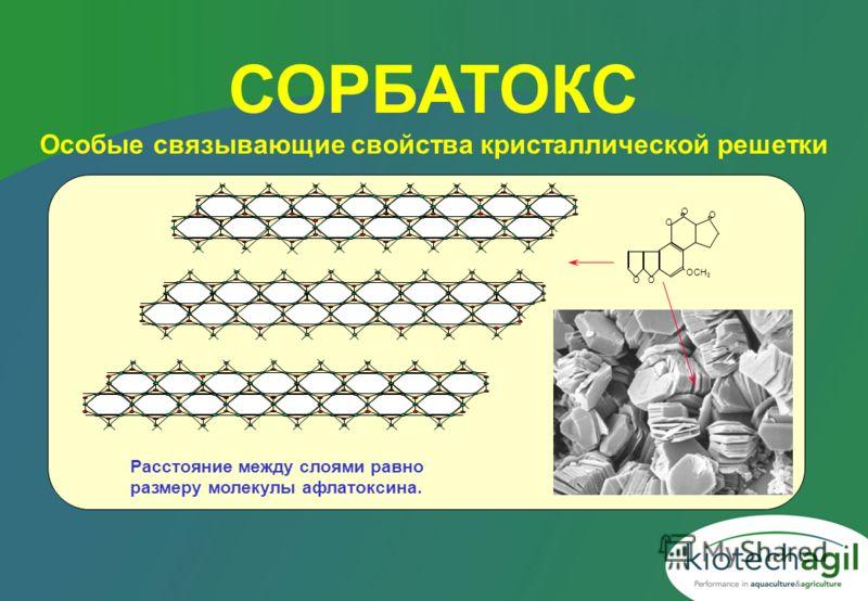 СОРБАТОКС Особые связывающие свойства кристаллической решетки Расстояние между слоями равно размеру молекулы афлатоксина. О О О О OCH 3 О