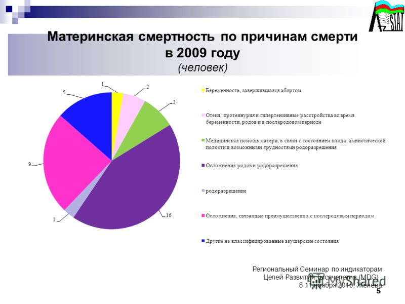 Материнская смертность по причинам смерти в 2009 году (человек) 5 Региональный Семинар по индикаторам Целей Развития Тысячелетия (MDG), 8-11 ноября 2010, Женева