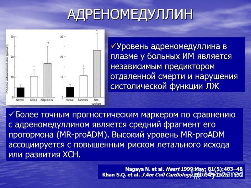 АДРЕНОМЕДУЛЛИН Уровень адреномедуллина в плазме у больных ИМ является независимым предиктором отдаленной смерти и нарушения систолической функции ЛЖ Уровень адреномедуллина в плазме у больных ИМ является независимым предиктором отдаленной смерти и на