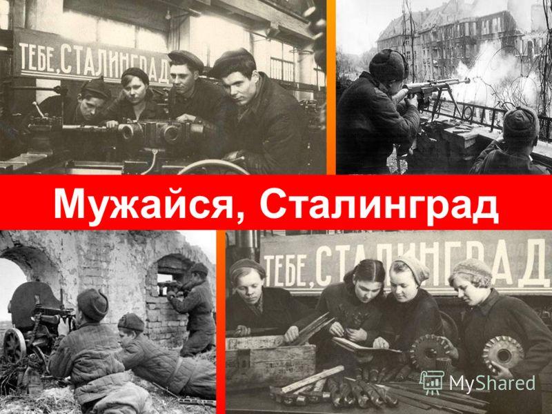 Мужайся, Сталинград