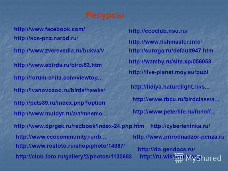 http://suroga.ru/default947.htmhttp://www.zverevedia.ru/bukva/v http://www.ebirds.ru/bird/53.htm http://forum-chita.com/viewtop... http://ivanovozoo.ru/birds/hawks/ http://pets39.ru/index.php?option http://www.rosfoto.ru/shop/photo/14987/ Ресурсы htt
