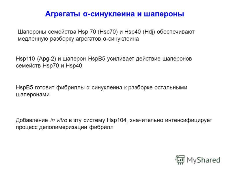 Агрегаты α-синуклеина и шапероны Шапероны семейства Hsp 70 (Hsc70) и Hsp40 (Hdj) обеспечивают медленную разборку агрегатов α-синуклеина HspB5 готовит фибриллы α-синуклеина к разборке остальными шаперонами Hsp110 (Apg-2) и шаперон HspB5 усиливает дейс