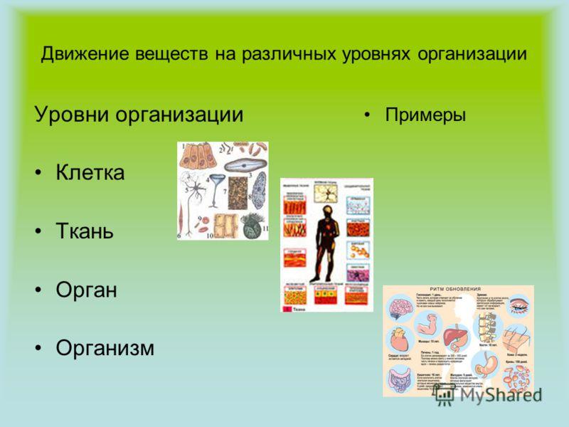 Движение веществ на различных уровнях организации Уровни организации Клетка Ткань Орган Организм Примеры