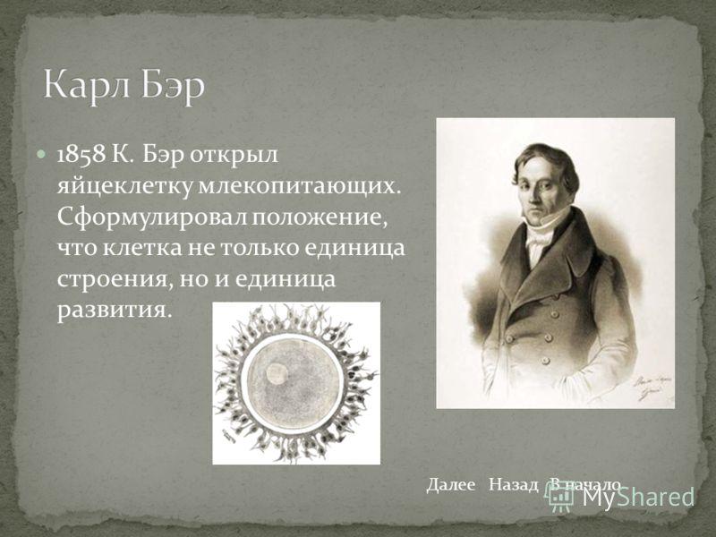 1858 К. Бэр открыл яйцеклетку млекопитающих. Сформулировал положение, что клетка не только единица строения, но и единица развития. ДалееНазадВ начало