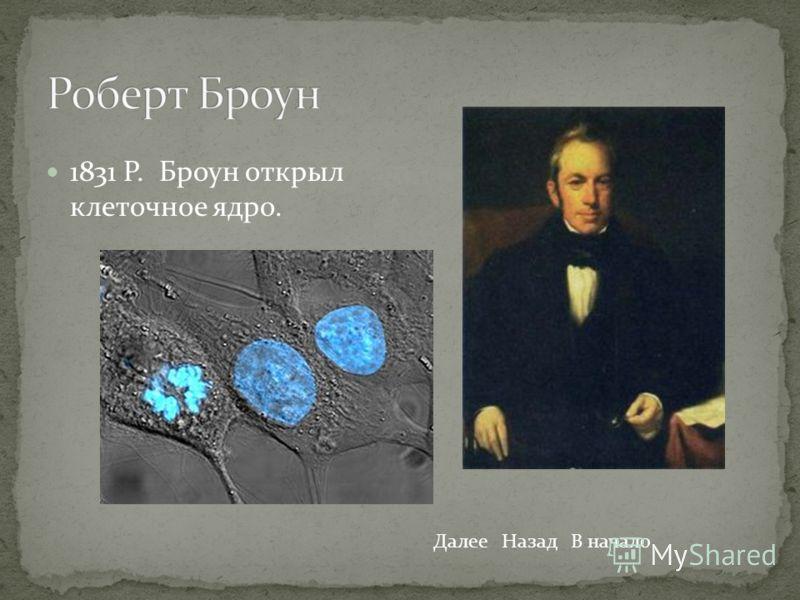 1831 Р. Броун открыл клеточное ядро. ДалееНазадВ начало