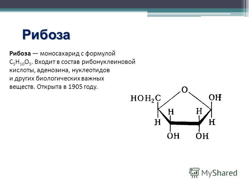 Рибоза Рибоза моносахарид с формулой С 5 Н 10 О 5. Входит в состав рибонуклеиновой кислоты, аденозина, нуклеотидов и других биологических важных веществ. Открыта в 1905 году.