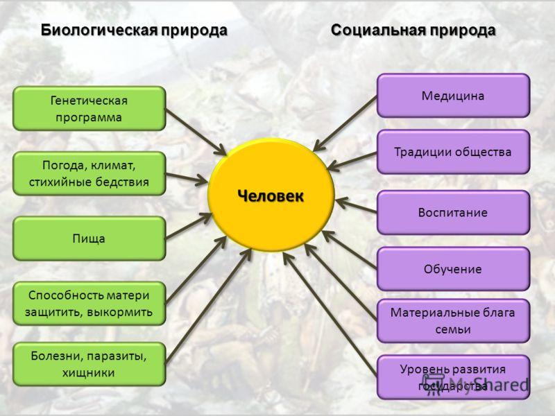 Биологическая И Социальная Природа Человека Шпаргалка