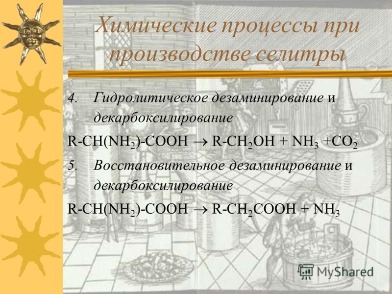 2. Декарбоксилирование R-CH(NH 2 )-COOH R-CH 2 NH 2 +CO 2 3. Гидролитическое дезаминирование R-CH(NH 2 )-COOH + H 2 O RCH(OH)COOH + NH 3 Химические процессы при производстве селитры амин оксикислота