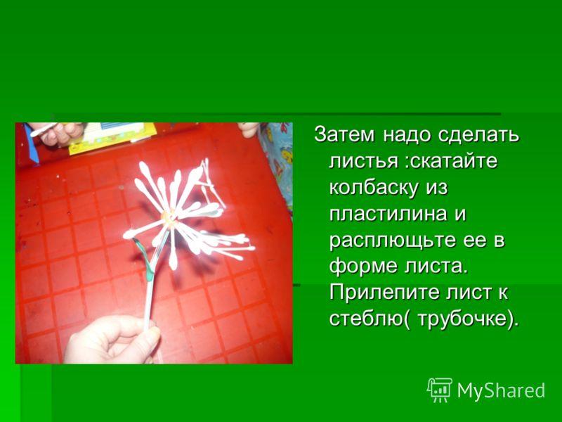Затем надо сделать листья :скатайте колбаску из пластилина и расплющьте ее в форме листа. Прилепите лист к стеблю( трубочке). Затем надо сделать листья :скатайте колбаску из пластилина и расплющьте ее в форме листа. Прилепите лист к стеблю( трубочке)