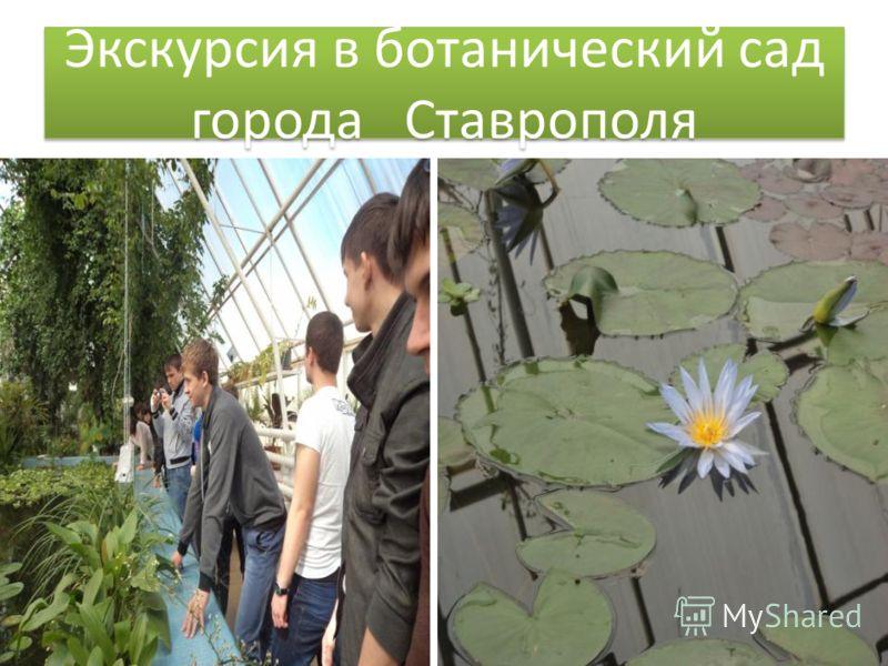 Экскурсия в ботанический сад города Ставрополя