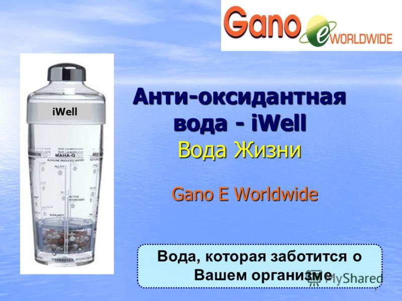 1 Анти-оксидантная вода - iWell Вода Жизни Gano E Worldwide iWell Вода, которая заботится о Вашем организме