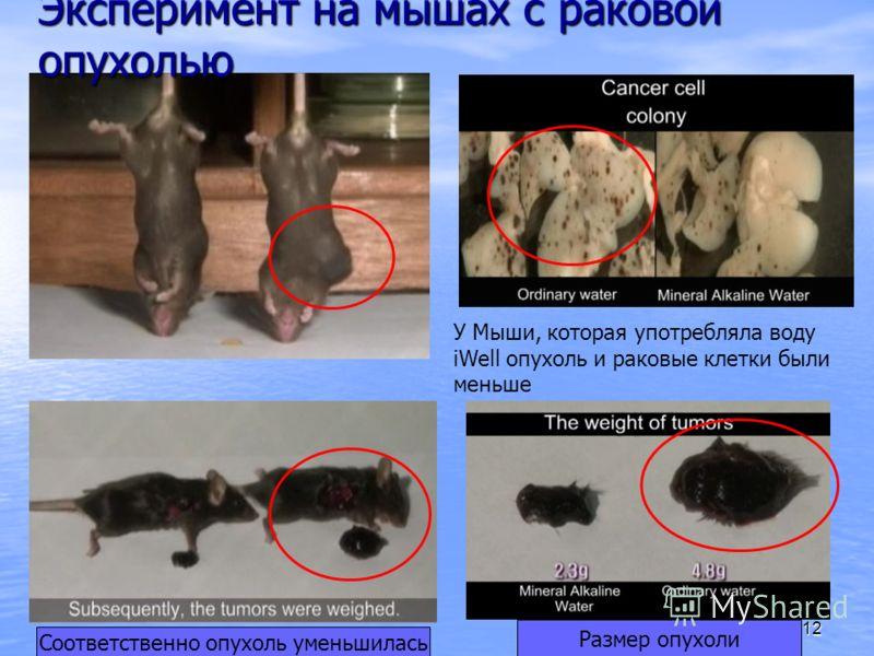 12 Эксперимент на мышах с раковой опухолью У Мыши, которая употребляла воду iWell опухоль и раковые клетки были меньше Соответственно опухоль уменьшилась Размер опухоли