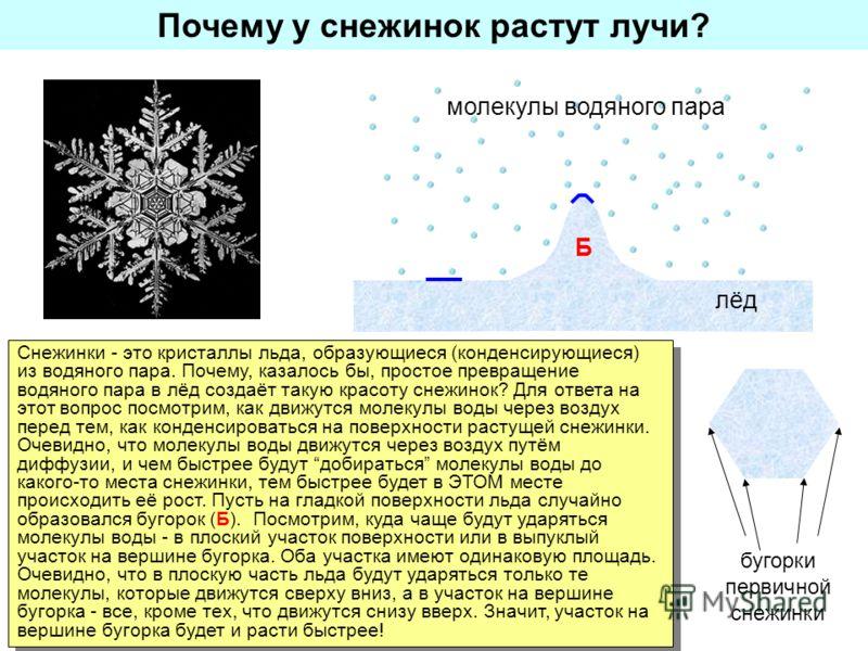 Почему у снежинок растут лучи? Снежинки - это кристаллы льда, образующиеся (конденсирующиеся) из водяного пара. Почему, казалось бы, простое превращение водяного пара в лёд создаёт такую красоту снежинок? Для ответа на этот вопрос посмотрим, как движ