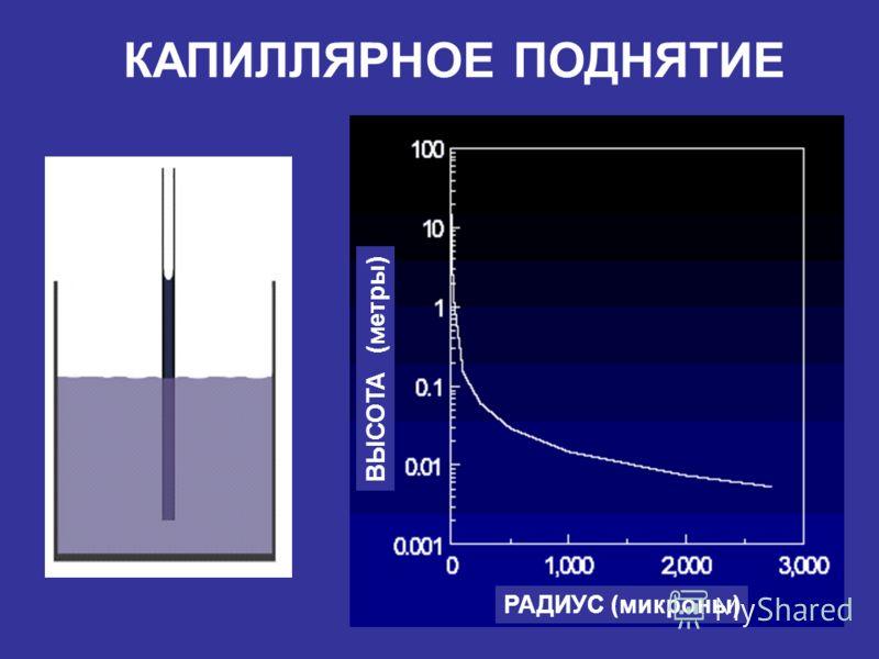 КАПИЛЛЯРНОЕ ПОДНЯТИЕ РАДИУС (микроны) ВЫСОТА (метры)