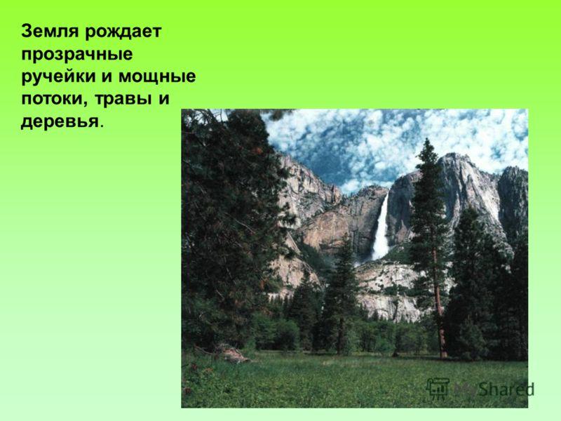 Земля рождает прозрачные ручейки и мощные потоки, травы и деревья.