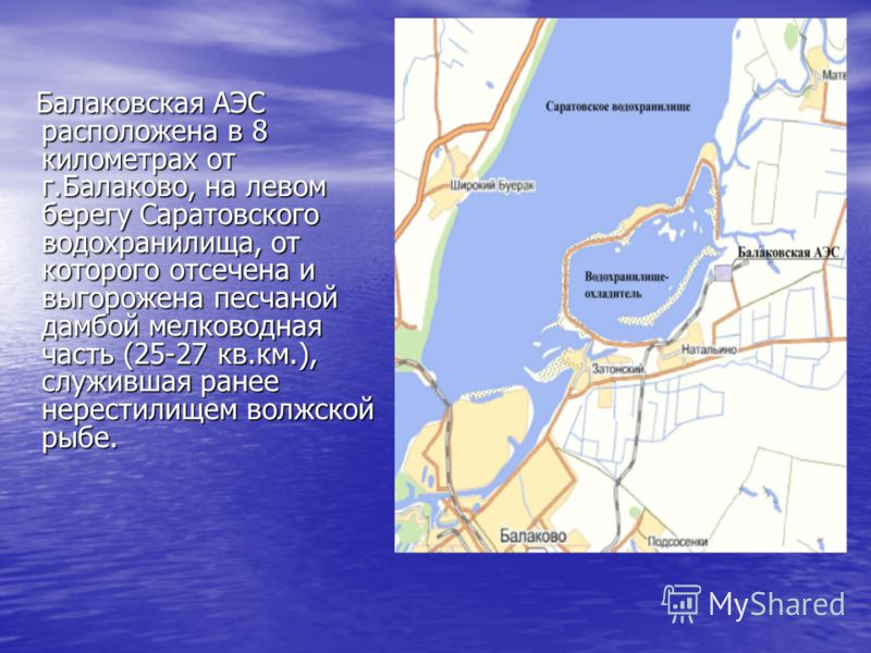Балаковская АЭС расположена в 8 километрах от г.Балаково, на левом берегу Саратовского водохранилища, от которого отсечена и выгорожена песчаной дамбой мелководная часть (25-27 кв.км.), служившая ранее нерестилищем волжской рыбе. Балаковская АЭС расп