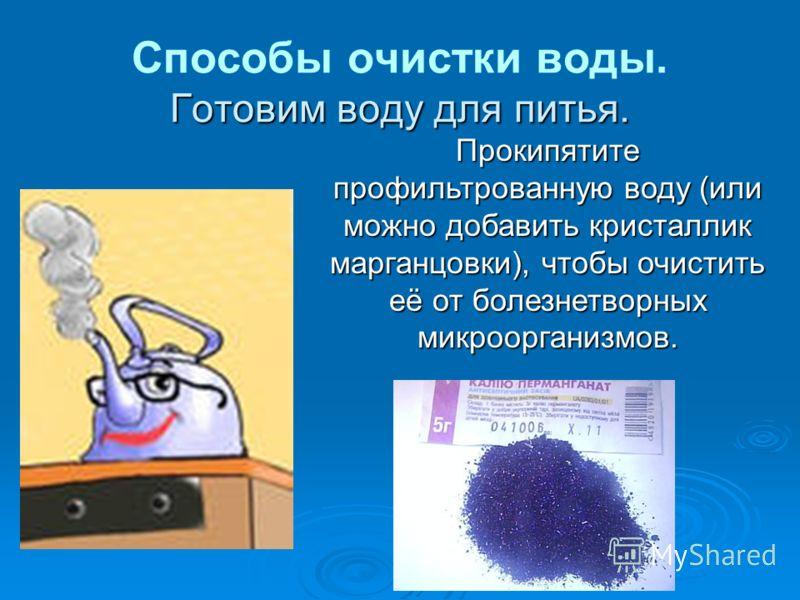 Прокипятите профильтрованную воду (или можно добавить кристаллик марганцовки), чтобы очистить её от болезнетворных микроорганизмов.