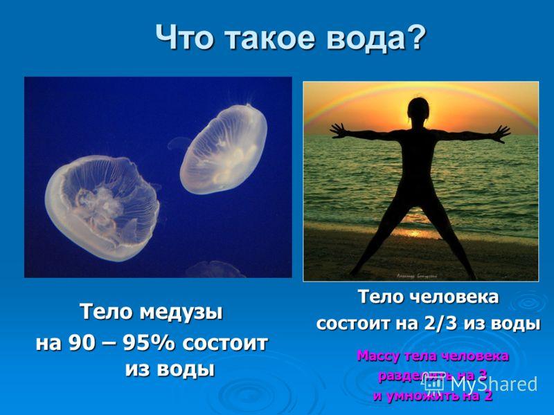 Тело медузы на 90 – 95% состоит из воды Тело человека состоит на 2/3 из воды Массу тела человека разделить на 3 и умножить на 2