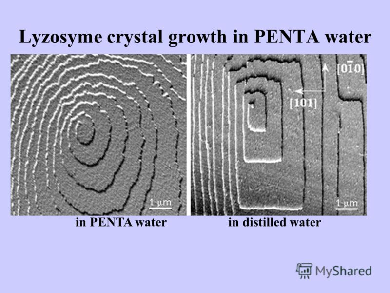 Lyzosyme crystal growth in PENTA water in PENTA waterin distilled water