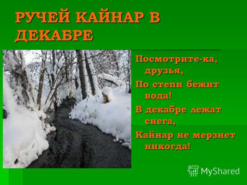 РУЧЕЙ КАЙНАР В ДЕКАБРЕ Посмотрите-ка, друзья, По степи бежит вода! В декабре лежат снега, Кайнар не мерзнет никогда!