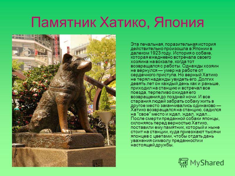 Памятник Хатико, Япония Эта печальная, поразительная история действительно произошла в Японии в далеком 1923 году. История о собаке, которая ежедневно встречала своего хозяина на вокзале, когда тот возвращался с работы. Однажды хозяин не вернулся уме