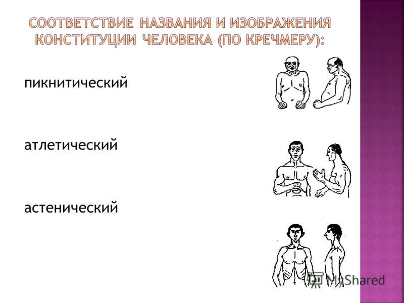 пикнитический атлетический астенический