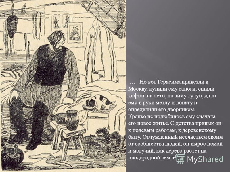 … Но вот Герасима привезли в Москву, купили ему сапоги, сшили кафтан на лето, на зиму тулуп, дали ему в руки метлу и лопату и определили его дворником. Крепко не полюбилось ему сначала его новое житье. С детства привык он к полевым работам, к деревен