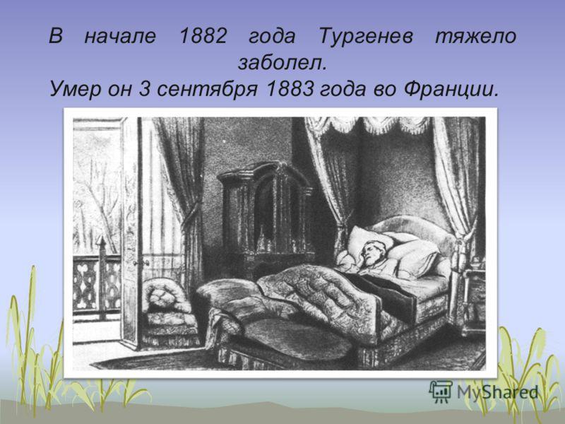 В начале 1882 года Тургенев тяжело заболел. Умер он 3 сентября 1883 года во Франции.