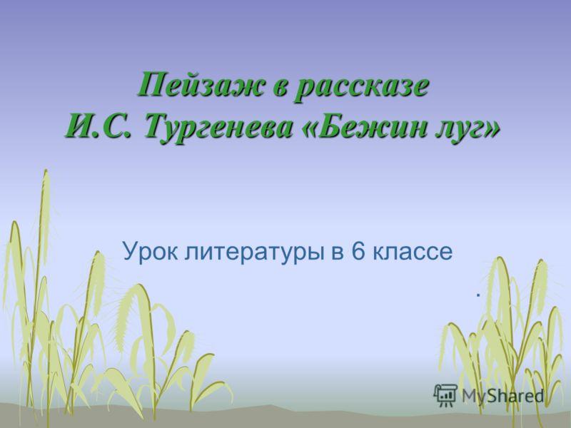 Пейзаж в рассказе И.С. Тургенева «Бежин луг» Урок литературы в 6 классе.