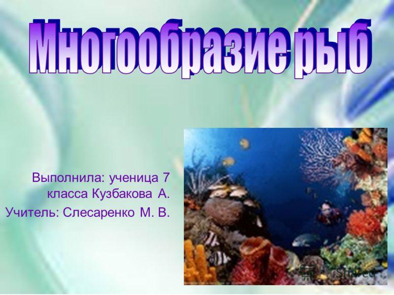 Выполнила: ученица 7 класса Кузбакова А. Учитель: Слесаренко М. В.