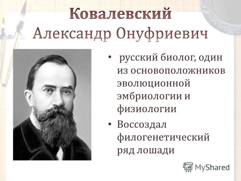 русский биолог, один из основоположников эволюционной эмбриологии и физиологии Воссоздал филогенетический ряд лошади
