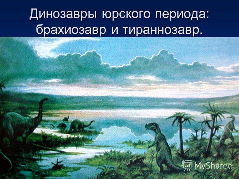 Динозавры юрского периода: брахиозавр и тираннозавр.