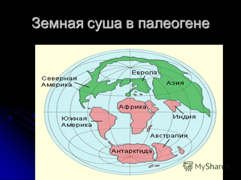 Земная суша в палеогене