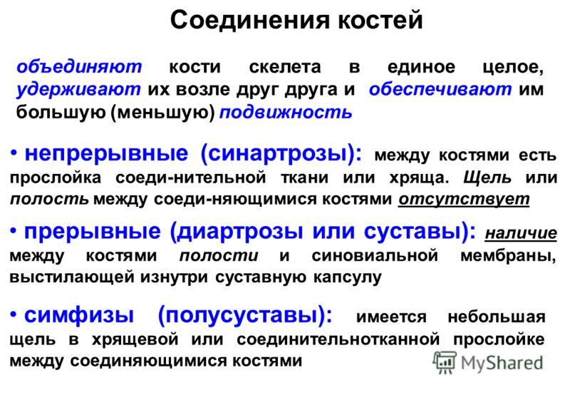 Вспомогательный аппарат суставов мрт плечевого сустава в москве адреса и цены свао