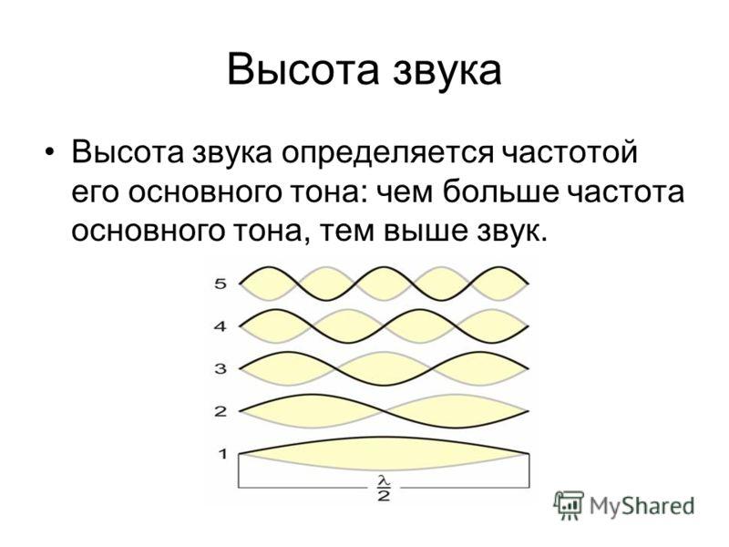 Высота звука Высота звука определяется частотой его основного тона: чем больше частота основного тона, тем выше звук.