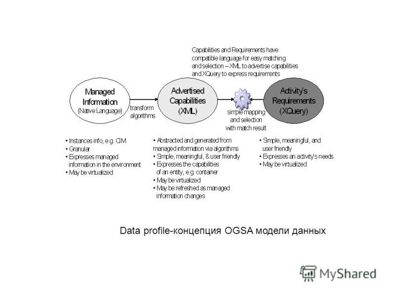 Data profile-концепция OGSA модели данных