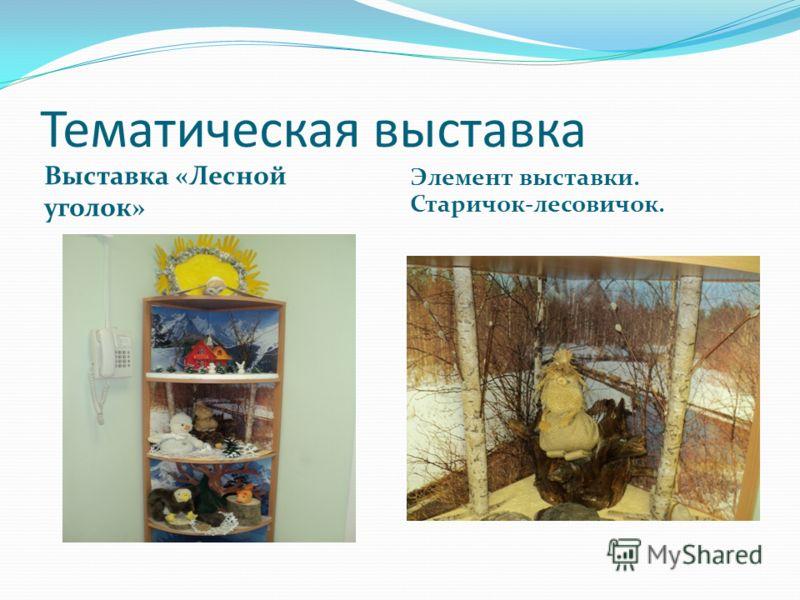 Тематическая выставка Выставка «Лесной уголок» Элемент выставки. Старичок-лесовичок.
