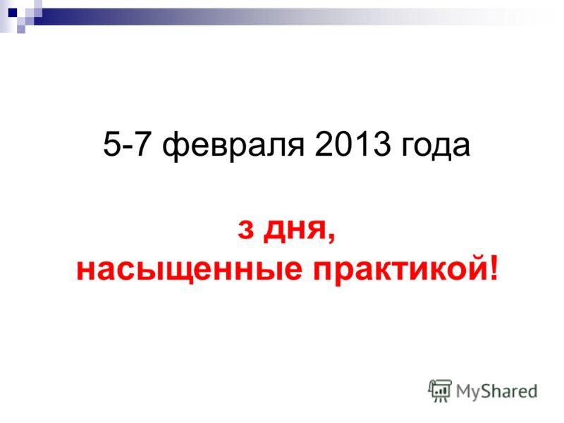 5-7 февраля 2013 года з дня, насыщенные практикой!